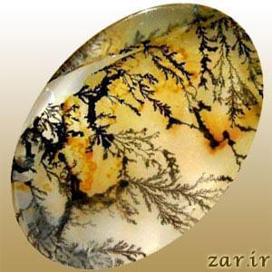 مشخصات و ویژگی های عقیق شجری (Dendritic Agate)