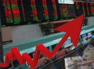 ایمیدرو، نخستین شرکت سهامی بورس را تشکیل می دهد